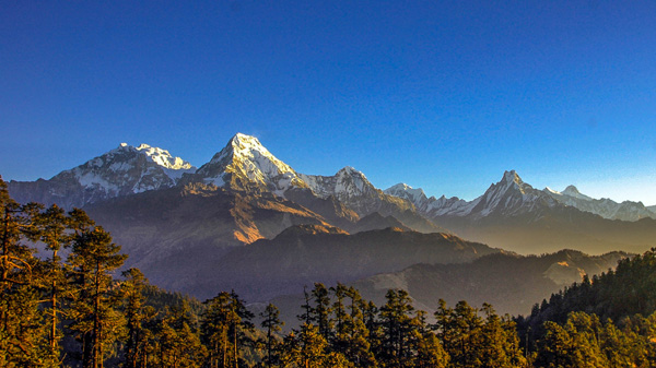 A view of Annapurna range seen from Mohare Danda(3300m).