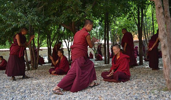 sakya-tibet