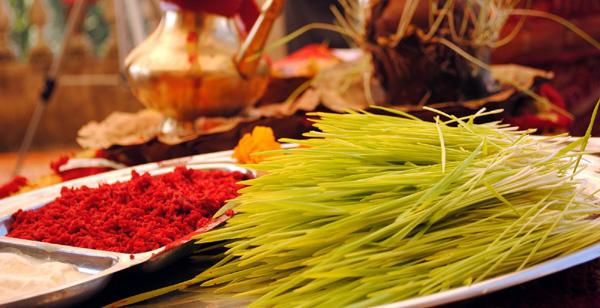 Dashain Tika & Jamara